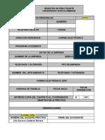 1. formato-registro-practicante