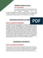 Perfil de los enfermeros.pdf