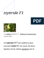 Hybride F1 — Wikipédia.pdf