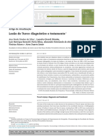 j.rbo.2013.07.004.pdf