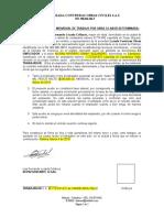 MODELO OTRO SI (1).docx