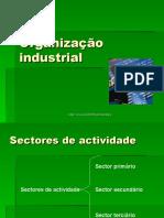 Organização industrial.ppt
