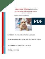 EXAMEN DE LOS ÓRGANOS ESTESIOLÓGICO.docx