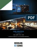 Generador SDMO.pdf