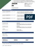 139-modele-cv-chauffeur-livreur-97-2003.doc