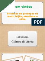 Aula 1 e 2 - Introdução e aspectos botanicos do Arroz.pdf