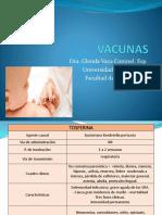 Enfermedades PAI 1.pdf