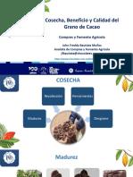 Cosecha, Beneficio y Calidad del Grano de Cacao. CNCH 24.04.2020. John Freddy Bautista