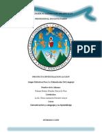 investigacion accion comunicacion y lenguaje completa.docx