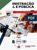 16486515-evolucao-da-administracao-parte-ii.pdf