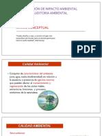 EIA 2020 A C1 CONCEPTOS BÁSICOS CALIDAD AMBIENTAL Y SALUD