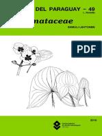 Alismataceae_FDP_49