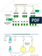 Determinación de Coliformes Totales y Fecales.docx