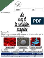 1.-Le-sang-et-la-circulation-sanguine-CM.pdf