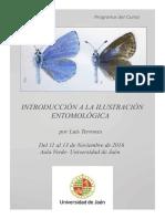 Dibujo entomologico.pdf
