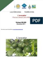 pdf-3avocatier1112_compress