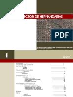 PLAN DIRECTOR DE HERNANDARIAS 2010