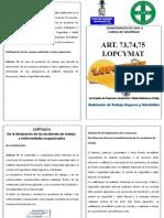 A DIPTICO ART 73,74,75 LOPCYMAT