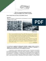APX2_OrganizaçãoRegionalBrasil_DanielMouradePaula_Niteroi