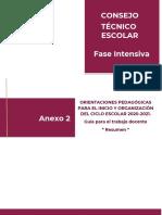 VUI-X-0365-TEC-Orientacionespedagogicas-Anexo-4.pdf.pdf