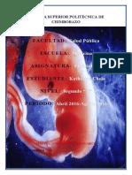 CICLO MENSTRUAL-FECUNDACION