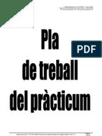 Pla Treball Practicum