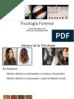 tricologiaforense.pdf