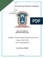 FQII-practica05 benzocaina COMPLETO