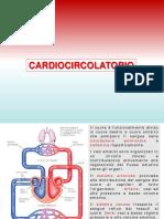 Lezione 3 cardiocircolatorio