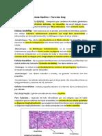 Histologia_del_sistema_endocrino_Piero_Koo_Doig.pdf