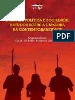 Estudo política e sociedade :estudo sobre capoeira na contemporaneidade