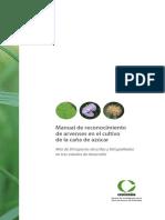manual_reconocimiento_arvenses.pdf