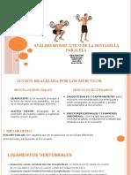 Análisis biomecánico de la sentadilla (1).pptx