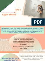 10-Esp-Perro-Higiénico-parte-10-1
