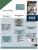 CAMBIOS FISICOS EN LA ADULTEZ INTERMEDIA.pptx