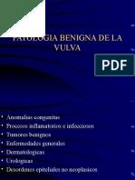 benigna vulva barcelo