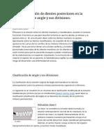Tipos de oclusión de dientes posteriores en la clasificación de angle y sus divisiones
