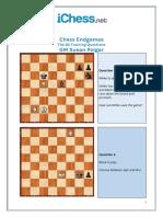 Puzzles - Chess Endgames