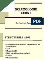 Curs 1_Ocluzo