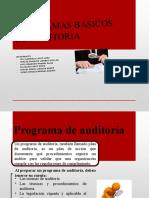 programas básicos de auditoria