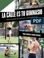 La calle es tu gimnasio. Guía completa de calistenia y street workout