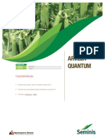 Arveja-quantum_PERU