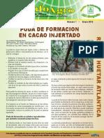 Poda de formación en cacao injertado.pdf