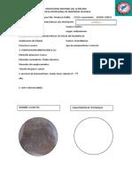 CARTILLAS DE PETRO SEDIMENTARIA.docx