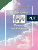 Rinoceronte Rossana Lopez