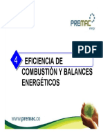 EF. COMBUSTION Y BALANCES ENERGETICOS