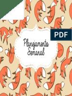 CAPA_raposinhas.pdf