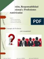 Grupo 02(PROFESION, RESPONSABILIDAD PROFESIONAL Y PROFESIONES AUTORIZADAS)