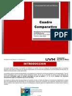 Act#4-Cuadrocomparativo-VLM