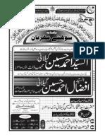 Sohney Merhraban Magazine (January 2011)